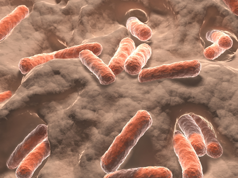 Can Inflammation Causing Intestinal Bacteria Be Inherited?