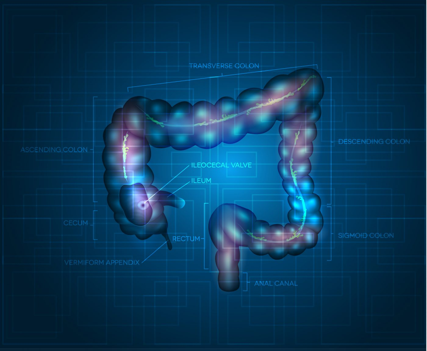 Frisbie Memorial Hospital Offers Virtual Colonoscopy For Colorectal Cancer Screening