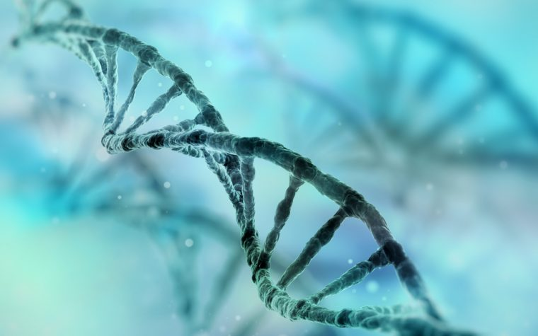 Enhancer DNA Regions May Promote Colon Cancer Growth