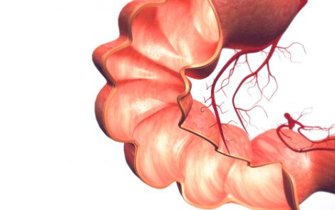 Researchers Take Aim at Early-stage Colon Cancer by Working on New Endoscope Device